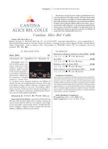 cantina-alice-bel-colle-1